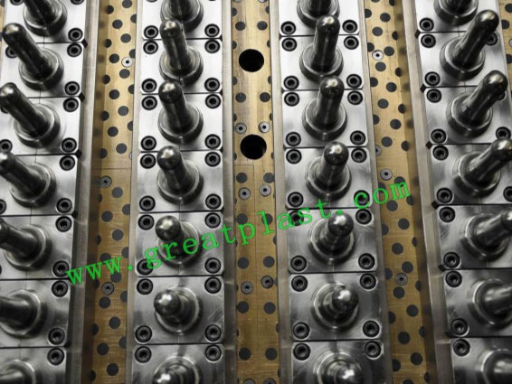 PET hot runner preform mold